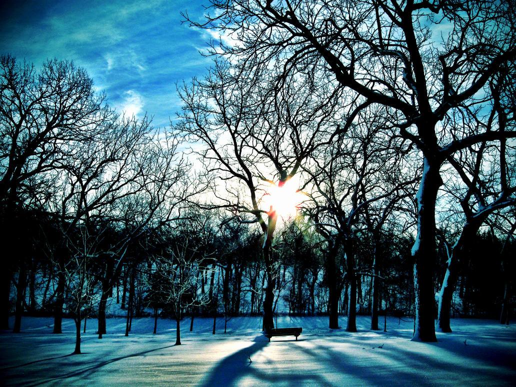 Snowscape by MrEnigma27