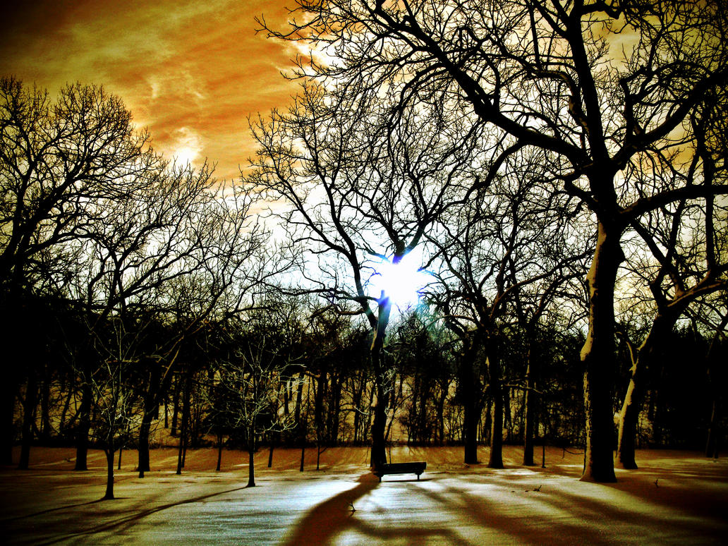 Snowscape 2 by MrEnigma27