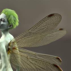 Dragonfly pixie2