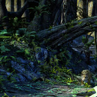 Jaguar Jungle by Willbear