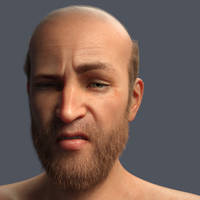 Test expression by Willbear