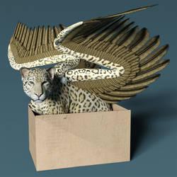 Jaguar Box by Willbear