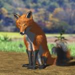 Fox 3DL