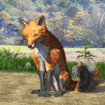 Fox Art LM