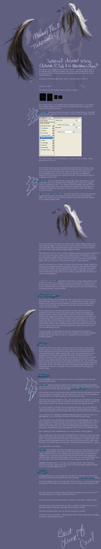 Mane and Tail Tutorial by arrsistable