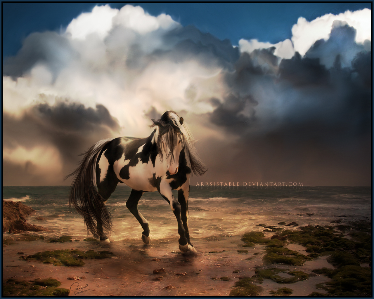 Simple   Wallpaper Horse Iphone - POH__Wallpaper_by_arrsistable  Gallery_245232.jpg