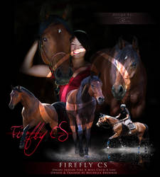 Firefly CS - Commission