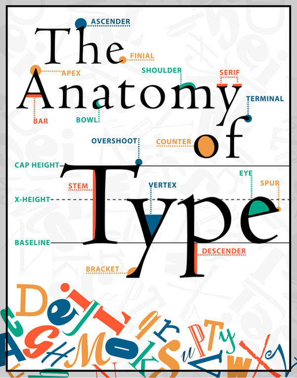The Anatomy Of Type Poster By Designstew On Deviantart