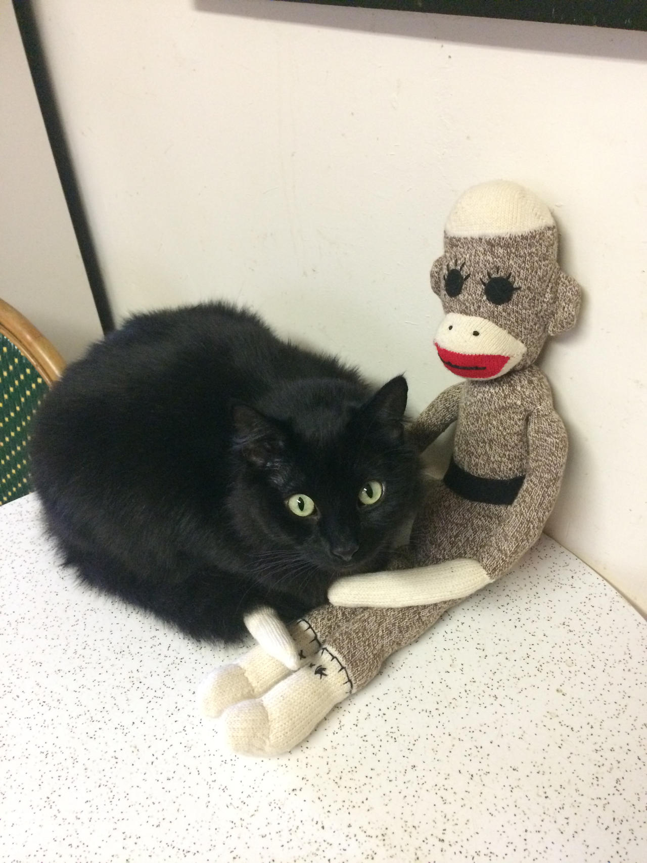 Black Cat And Sock Monkey Love By