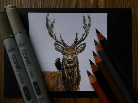 Deer and Crow (miniature drawing)