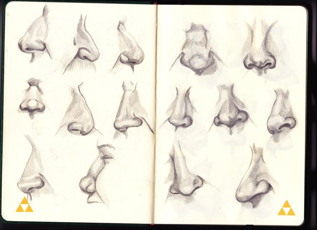 Noses 01 by Barsine4k
