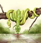 Tree Pythons by Bratzoid