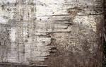Wooden Texture 1