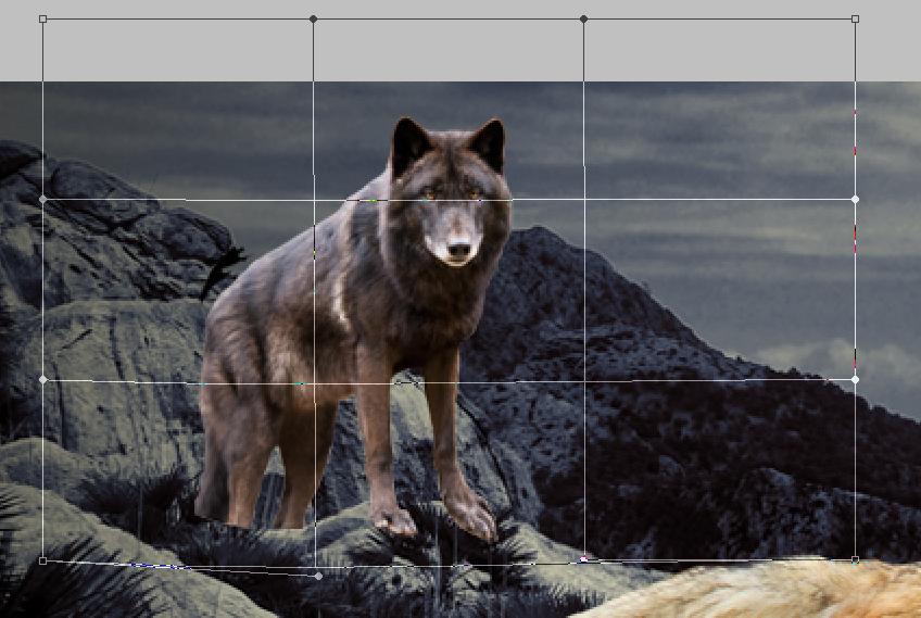 Tutoriel de photomanipulation Step_8_by_phoeniciands-d8q03s1