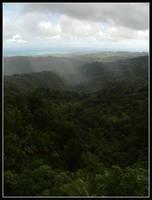 El Yunque Rainforest by kessalia