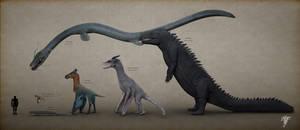 Draconology: The Draconimorpha