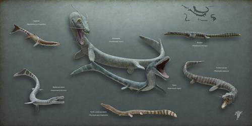 Draconology - The Thalattophidia
