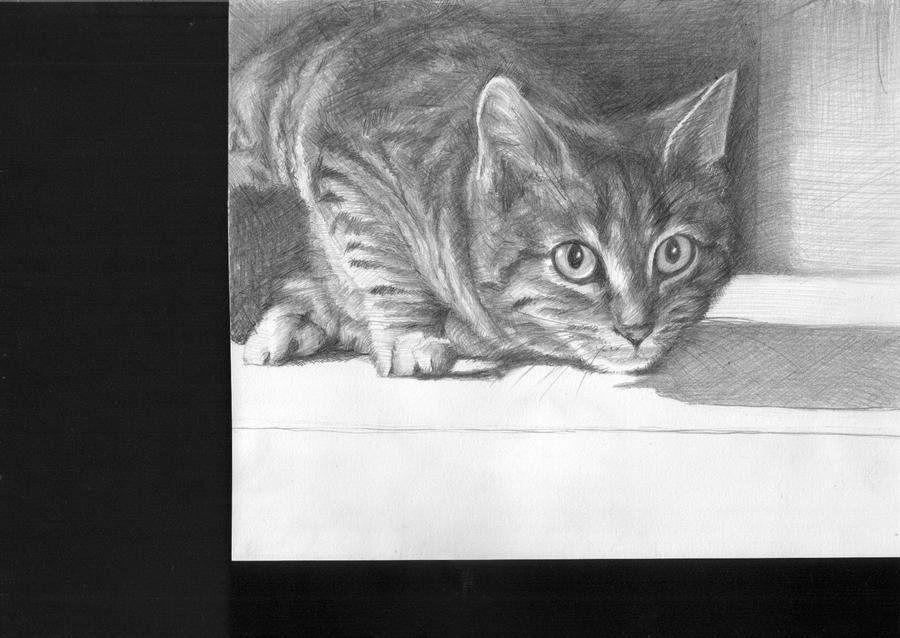 My lovely cat by Yakhovskaya