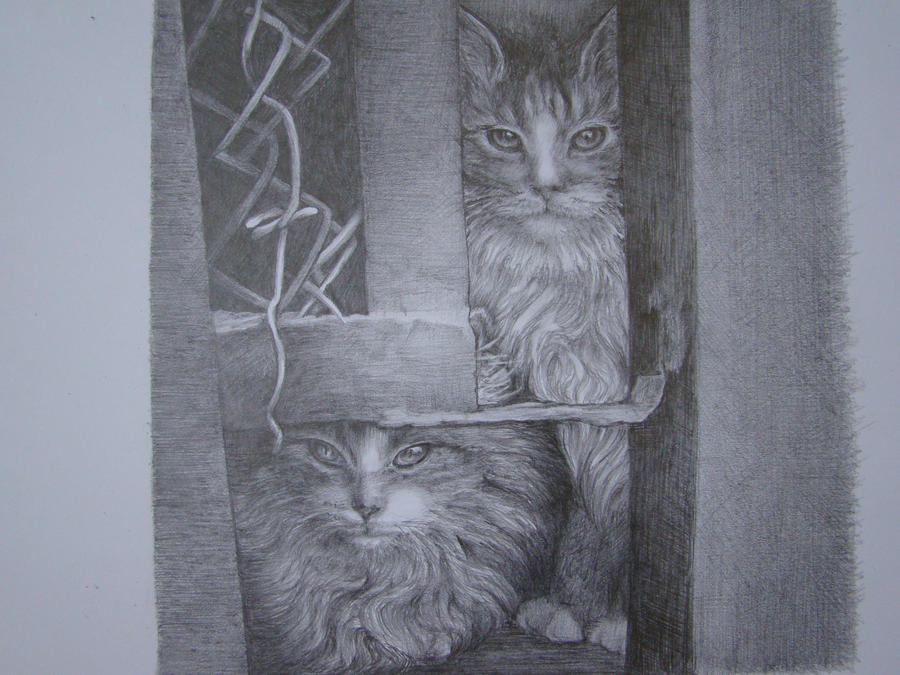 The cats by Yakhovskaya