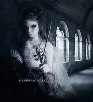 - Symphony of the night - by SandyLynx