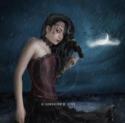 - Midnight moonlight -