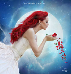 - Moonlight - by SandyLynx