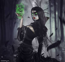 - The Dark Side of Me: Sallicorniae -