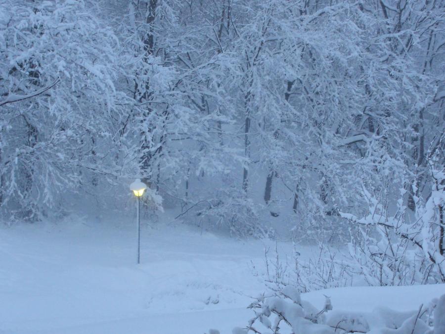 Narnia Landscape By Vampiresquid42 On DeviantArt