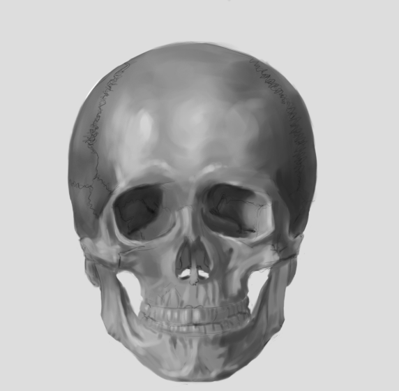 [Image: skull_of_an_adult_and_infant_by_75ilver-d53xjzb.png]