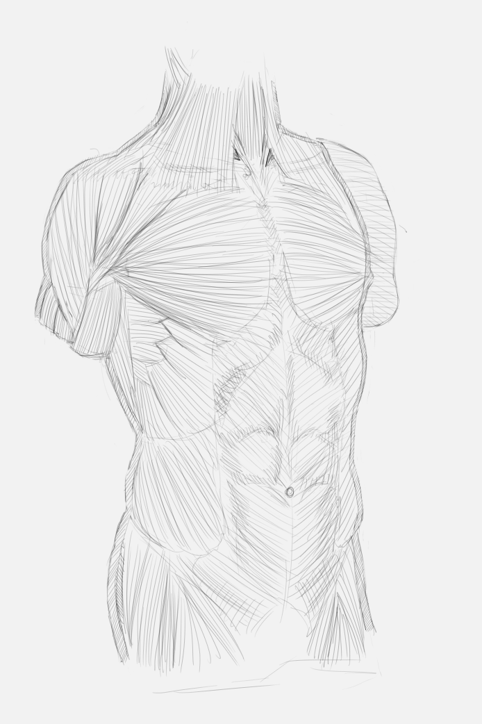 [Image: body_front_by_75ilver-d53xjzv.png]