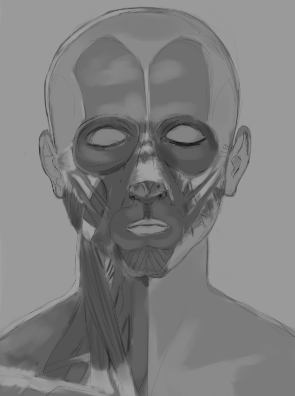 [Image: face_by_75ilver-d53xk0i.png]