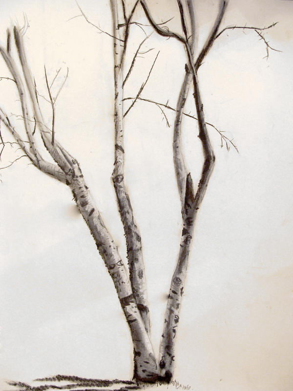 Birch tree by betsymae92 on deviantart for Birch tree tattoo meaning