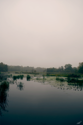 Overcast: #2 - Waterway