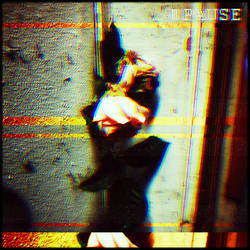 VHS Rose