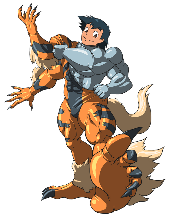 Machamp and Arcanine suit 02 by midorimushiG on DeviantArt