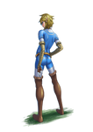 Link in the herosuit 03