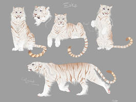 Tiger custom by Kouvinxx