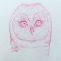 Morning Sketch #22