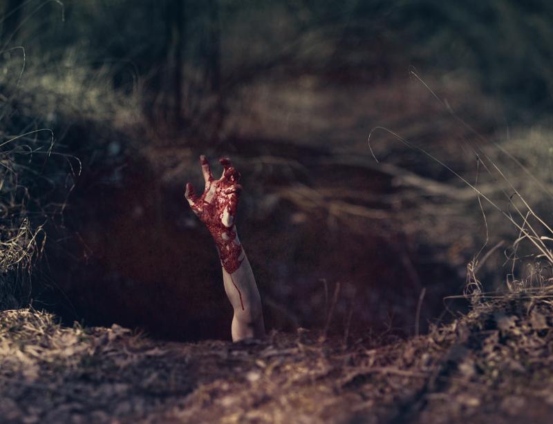 Week 8 - On Surviving by manuelestheim