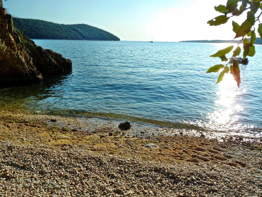 wild beach by Paul774