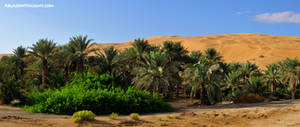 Liwa Oasis by VerticalDubai