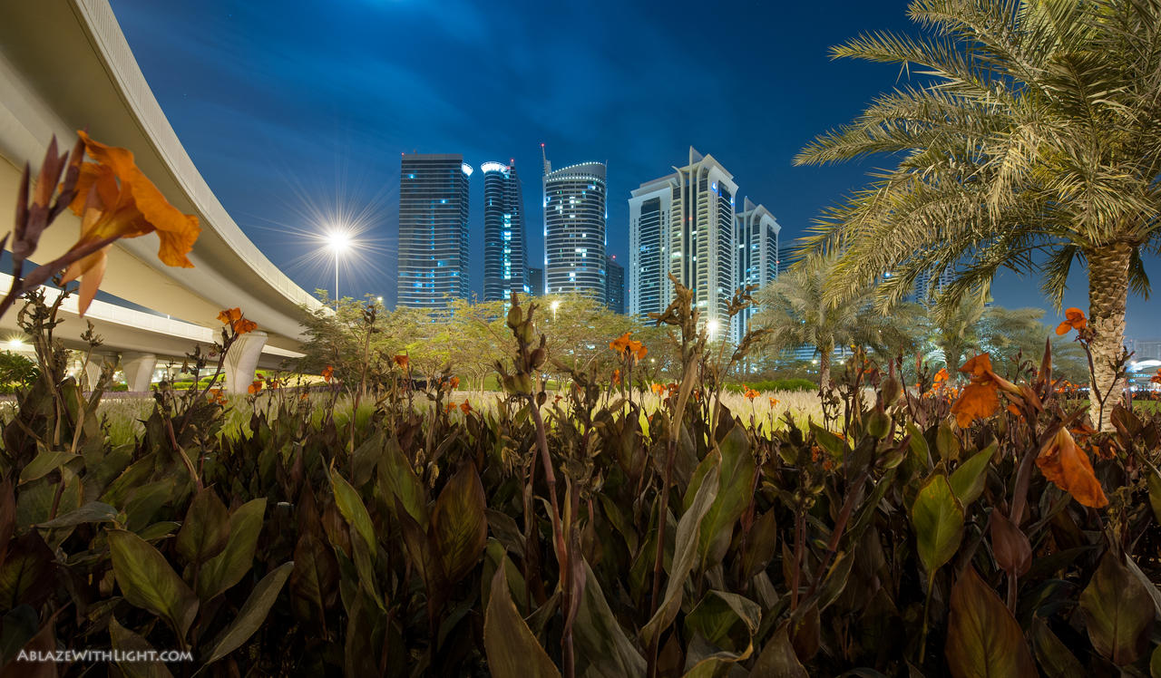 Urban Jungle by VerticalDubai