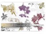 Orchid Brush Set