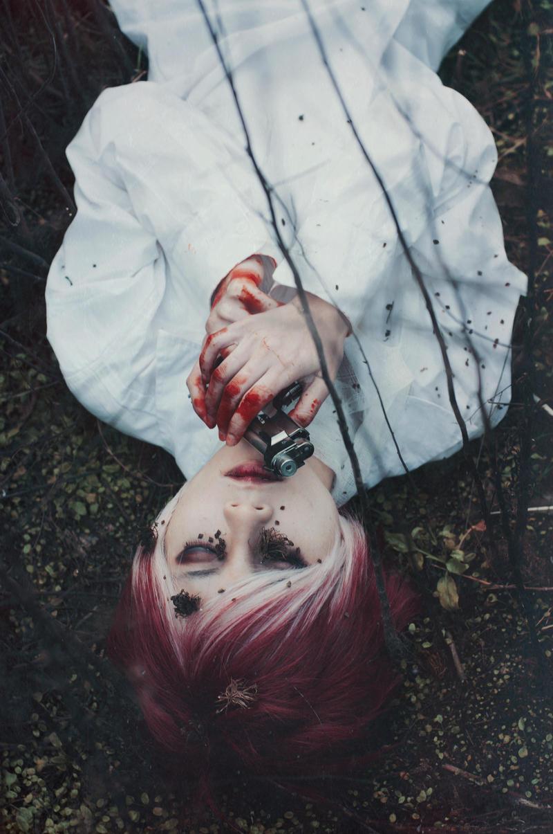 Dead Rose by zingruby