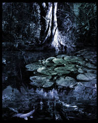 -The Swamp- by tacit-chaos