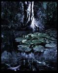 -The Swamp-