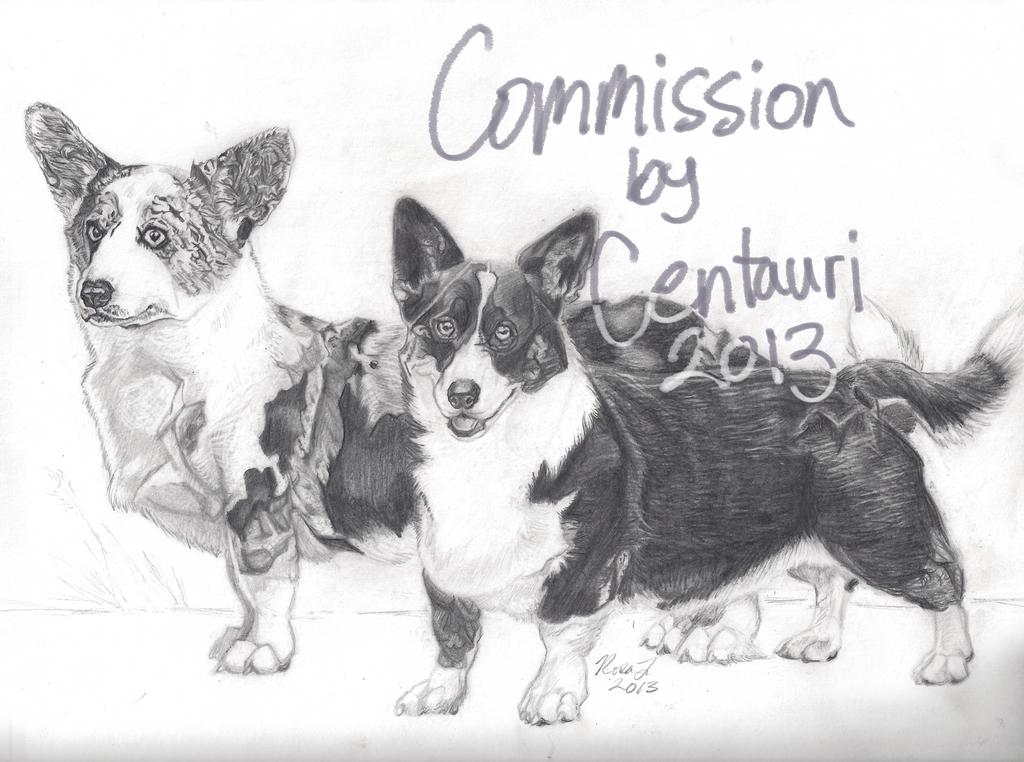 corgi_collection_by_centaurii-d6y4o8e.pn