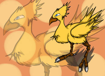 Chocobo speed image by renso2