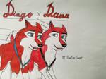 Dingo x Dana