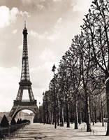 Tour Eiffel by maryalexandra
